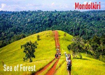 Mondokiri trip-Sea of forest tour-angkor friendly driver
